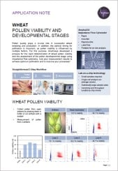Wheat Pollen Viability and Developmental Stages