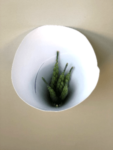 Foto of wheat spikes in a paper funnel