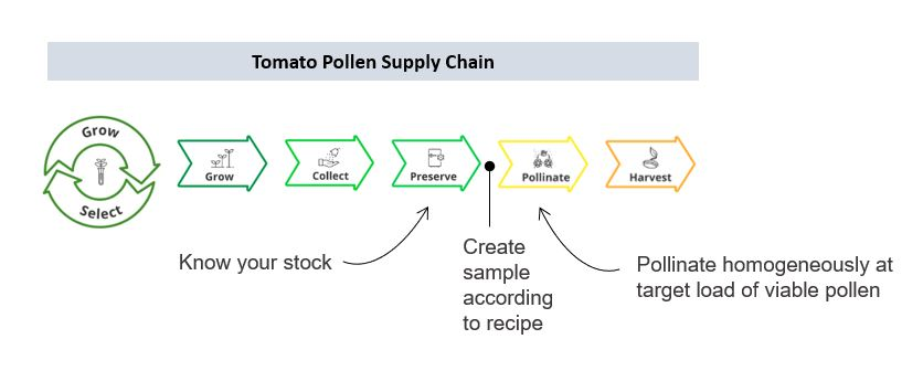 A visualization of a necessary enhancement of the tomato pollen supply chain