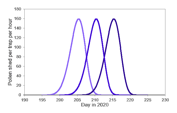 Visualization of hypothetical flowering of male corn lines