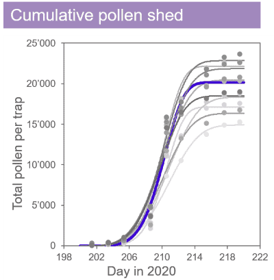 Visualization of cumulative pollen shed of corn lines