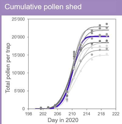 Visualization of cumulative pollen shed of corn lines